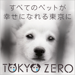 Banner_250_250_01
