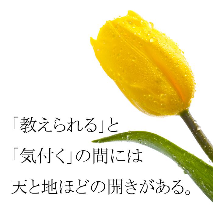 Awareness_2